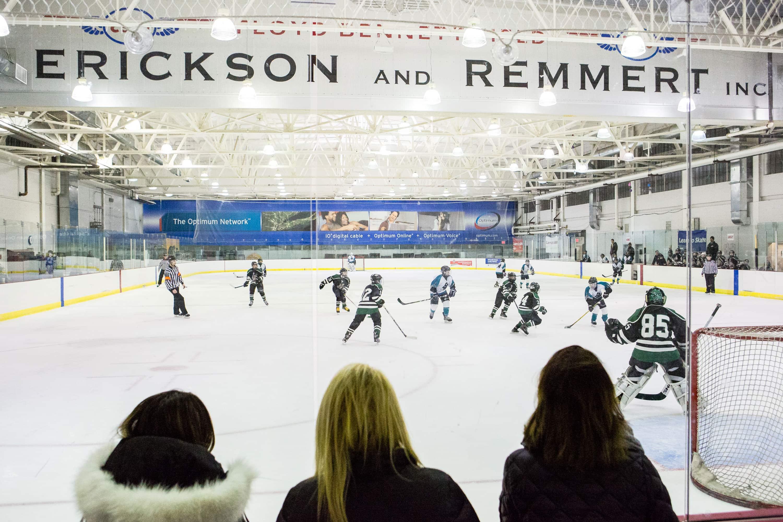 Detroit area adult hockey