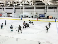 Recreational or competitive ice hockey leagues