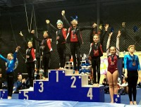 Aviator Gymnastics is helps train gymnasts to succeed
