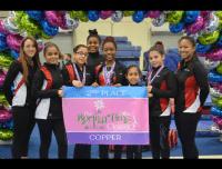 an aviator children's gymnastics team