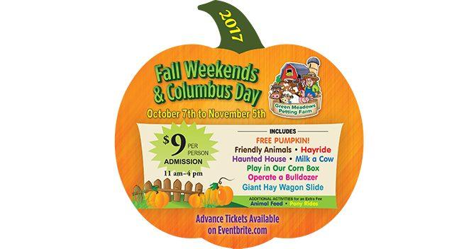 Pumpkin picking Family Fun Day, Green Meadows Farm