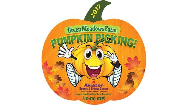 Pumpkin Picking Aviator, Green Meadows Farm