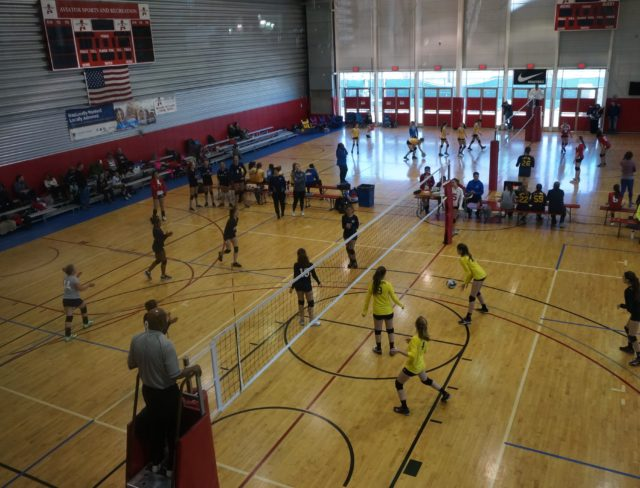 Volleyball Brooklyn