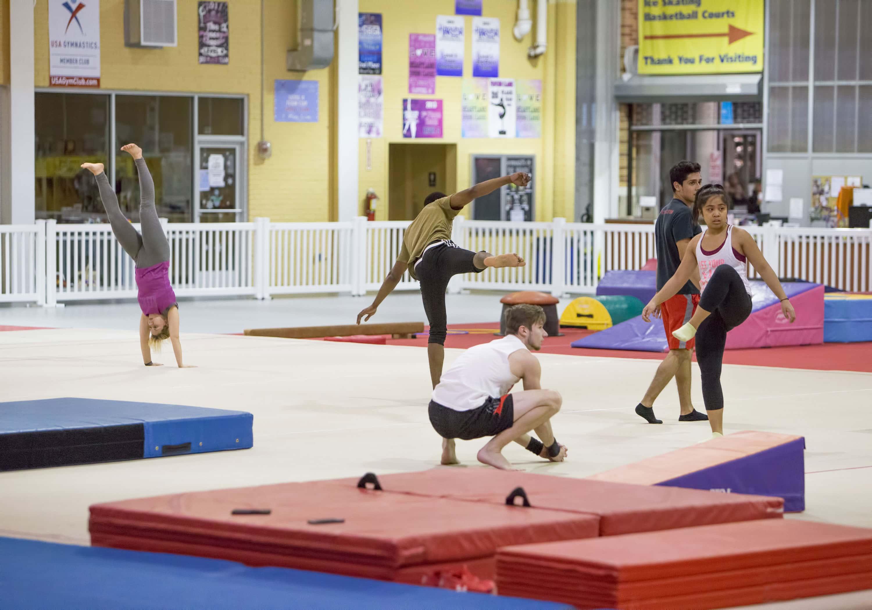 Gymnastics in Brooklyn   Aviator Gymnastics for Kids and Adults