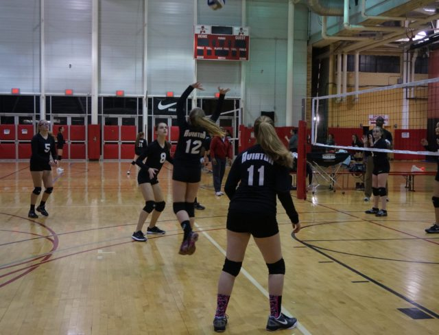 volleyball team brooklyn