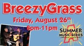 Breezy Grass | Outdoor Music Brooklyn | Summer Music Series