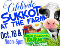 sukkot, green meadows farm
