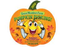 pumpkin picking, green meadows farm, aviator sports and events center