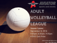 adult volleyball league, volleyball league near me, volleyball league brooklyn
