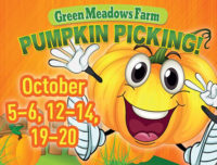 pumpkin picking event