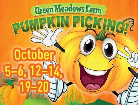pumpkin picking event
