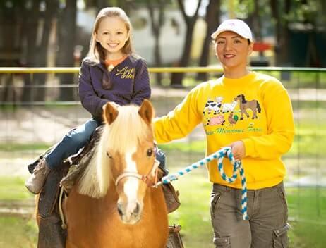 Petting zoo, petting farm, pony rides nyc, pony rides, horseback riding, pony rides near me,