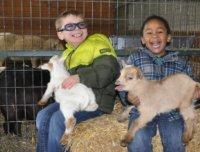 Petting zoo, petting farm, animal farm, best petting zoo, traveling petting zoo