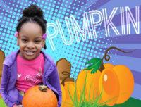 Pumpkin Picking in Brooklyn