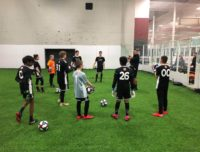 youth soccer clinics brooklyn