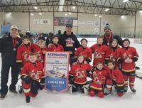 Aviator Hockey Squirt Finalists