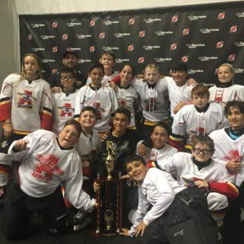 U12 Hockey Champions