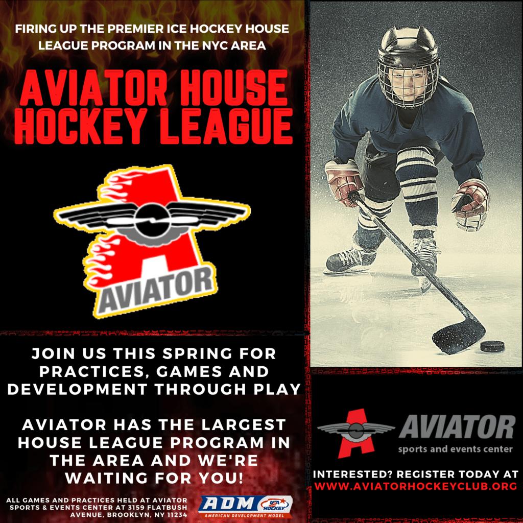 Aviator Hockey Back Flyer